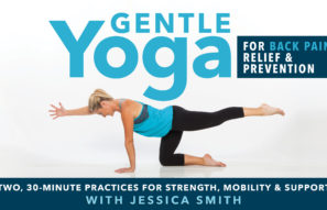 """Gentle Yoga for Back Pain Relief and Prevention"" now available on DVD and streaming!"